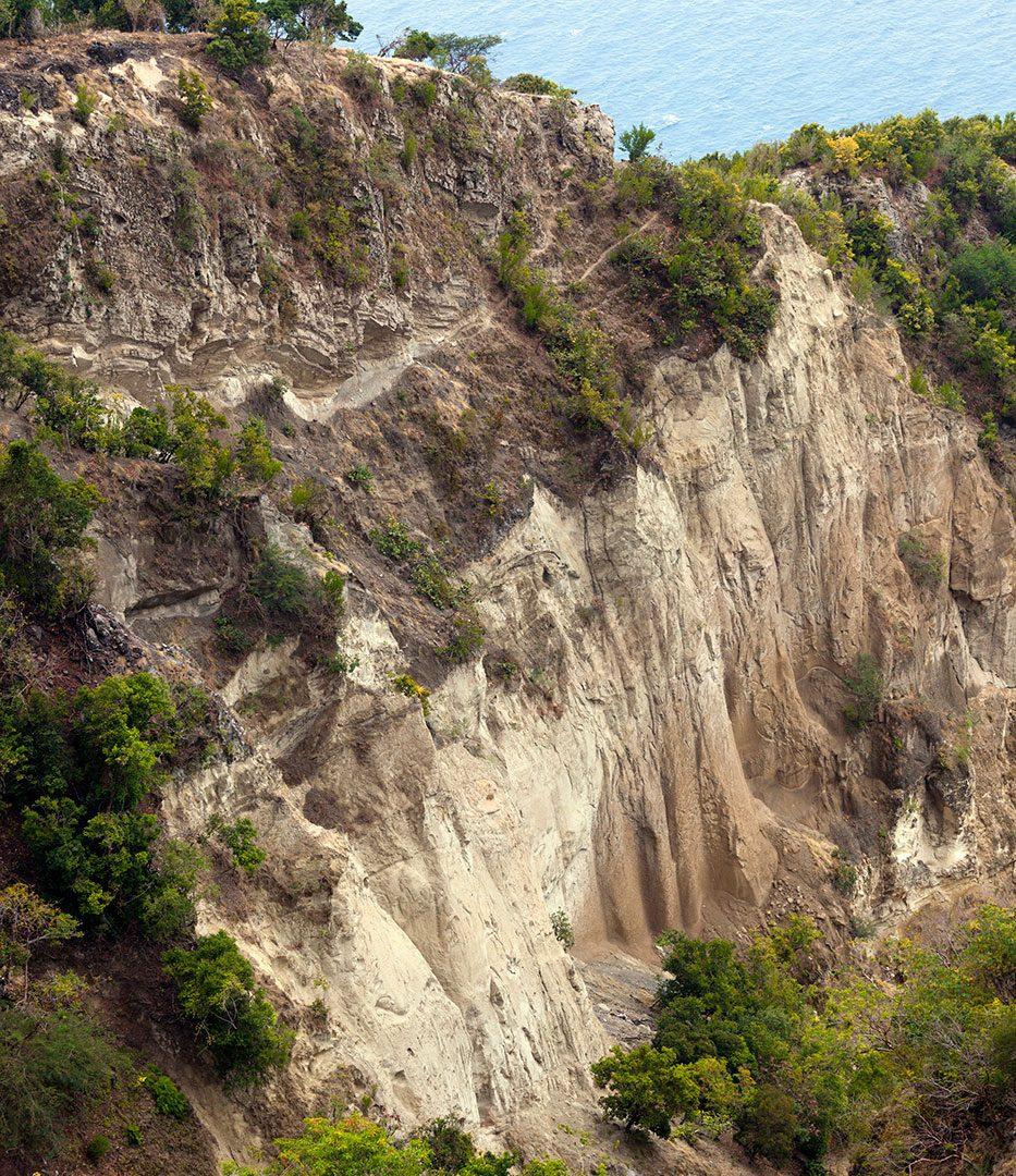 Search/Rescue of Iguanas under Fort Oranje